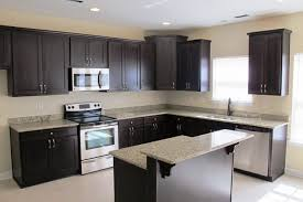 Wet Bar Dishwasher Granite Countertop Bar Cabinet Pulls Pearl Wall Tiles Kitchen