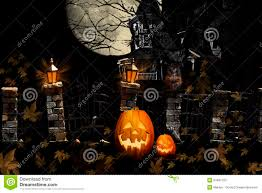picture of halloween cats halloween cat pumpkins haunted house stock photos image 33481163