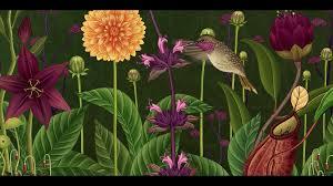azuma makoto u0027story of flowers u0027 a botanical animated short film