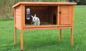 Best Rabbit Hutches Constructing Rabbit Hutches U2013 Sustainable Futures
