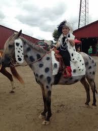 Dalmation Halloween Costume 25 Horse Costumes Ideas Horse Halloween