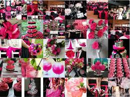 fuschia black pink pink pink and black black and