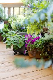 artistic houzz small yard landscaping for backyard gardening ideas