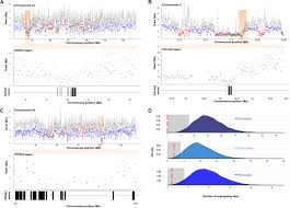 genome wide signatures of complex introgression and adaptive