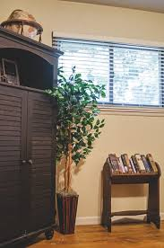 real or artificial plants for indoor decor how to decide which is