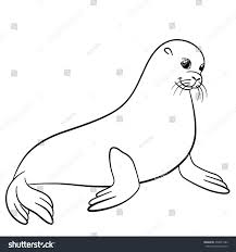 coloring pages little cute fur seal stock vector 450631582