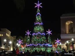 musical tree at the shops at wiregrass in wesley chapel