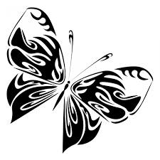 black butterfly free stock photo domain pictures