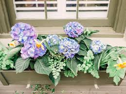 Plants And Planters by Window Box Planter Tips Hgtv