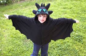 toothless costume toothless costume