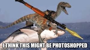 Meme Raptor - rpg raptor riding shark memes imgflip
