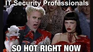 It Security Meme - it security professionals are so hot right now lifehacker australia