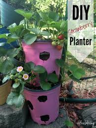 Challenge Plant Pot Diy Strawberry Planter From Recycled Materials