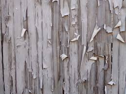 birch wood halloween background peeling paint on fence boards texture picture free photograph