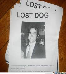 Lost Dog Meme - lost dog wait what by w meme center