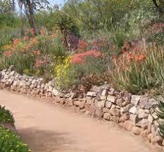 Desert Backyard Ideas Desert Landscaping Ideas Desert Garden Landscaping Ideas