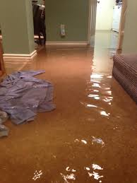 flooded basement cleanup how to ideas home design