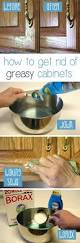 Spruce Up Kitchen Cabinets Best 25 Kitchen Cabinet Redo Ideas Only On Pinterest Diy