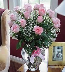 roses delivery 18 stem ecuadorian roses beneva