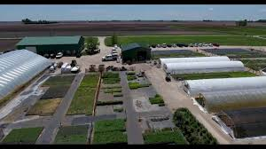 native plant nurseries pizzo native plant nursery flyover youtube