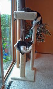 Modern Cat Tree Diana Laurence Jackson Galaxy Said To Get A Cat Tree
