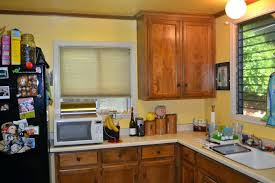 yellow kitchen theme ideas blue and yellow kitchens kitchen decor walls decorating ideas