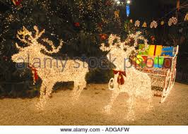 reindeer and sleigh lights in george square glasgow