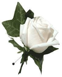 wedding flowers buttonholes buttonholes poole bournemouth wedding flowers
