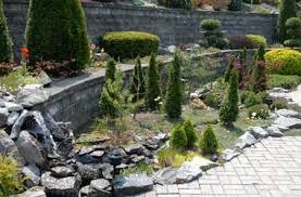 Ny Topiary - japanese maples nursery northeast conifers perennials shrubs trees