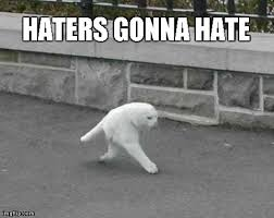 Haters Gonna Hate Meme - image tagged in halfcat funny cats haters gonna hate imgflip