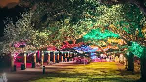 zoo lights houston 2017 dates txu presents zoo lights at the houston zoo youtube