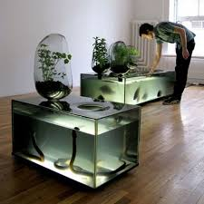unique aquarium decorations