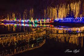 rotary lights la crosse holiday light show rotary botanical gardens