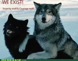 Wolf Meme - 44 best meme images on pinterest funny things insanity wolf meme