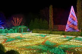 christmas lights in asheville nc winter lights at the nc arboretum is a spectacular display of 50 000