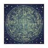 zodiac posters astrology posters and prints at