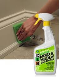 how to clean mold from a wood floor remove mold cleaning and