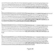 patent us20090130691 screening proteinase modulators using a