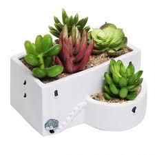 decoration stunning succulent desk top plant pot idea attractive