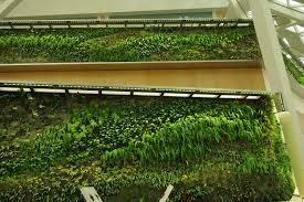 Indoor Vertical Gardens - kafd conference center indoor riyadh vertical garden patrick blanc