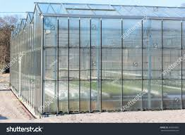 Greenhouse Windows by Part Greenhouse Facade Plants Visible Inside Stock Photo 365881805