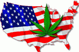 cheapest us states to live in mapping marijuana go west young man for the cheapest weed us