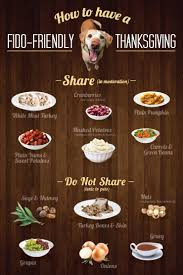 10 tips for feeding pets thanksgiving leftovers animal hospital of