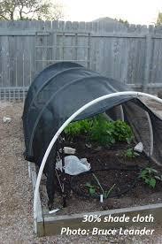 gorgeous vegetable garden shade cloth vegetable garden shade cloth