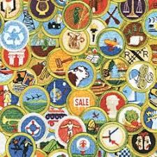 merit badge difficulty ratings