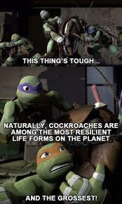Ninja Turtles Meme - teenage mutant ninja turtles meme funny nerd meme s pinterest