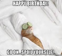 Cat Happy Birthday Meme - happy birthday go on spoil yourself pered cat meme make a