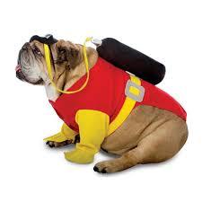 spirit halloween springfield il zelda scuba halloween dog costume pet costumes pinterest