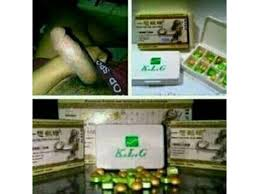 agen klg asli di tapanuli 081293746687 siborong borong sibolga