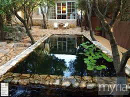 Backyard Swimming Ponds - 125 best swimming pond images on pinterest natural pools